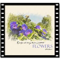 Digital Watercolor Video Tutorial