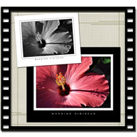Gallery Framing Video Tutorial