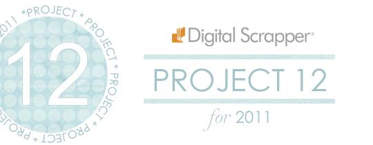 Project 12 – April 2011