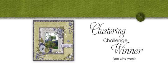 Clustering Challenge Winner