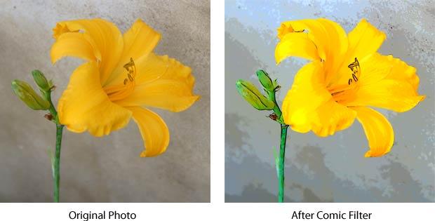 Comic Filter Flower