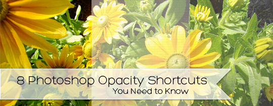 8 Photoshop Opacity Shortcuts You Need to Know