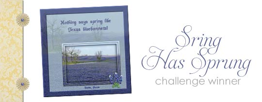 Spring Has Sprung Challenge Winner