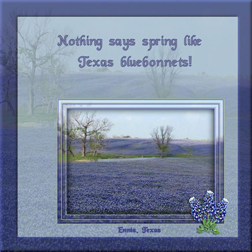 Spring_in_Texas