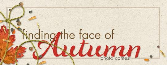 Finding the Face of Autumn Photo Contest