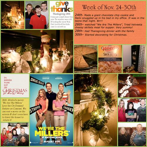 Project-life-Nov-24-30-2013