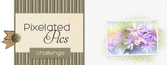 Pixelated Pics Challenge