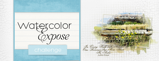 Watercolor Expose Challenge