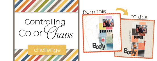 Controlling Color Chaos Challenge