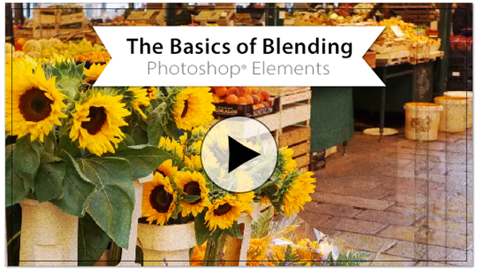 basics-blending-ELbutton