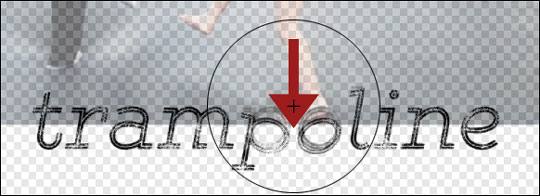 dst-trampled-type-img4