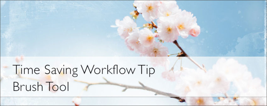 Time Saving Workflow Tip — Brush Tool