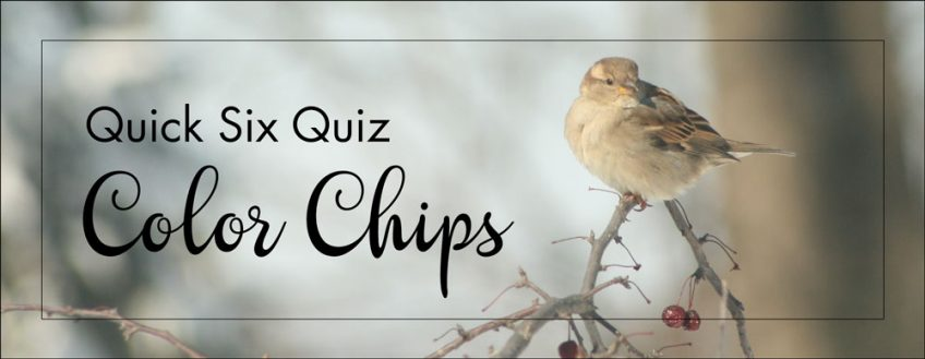 Quick Six Quiz – Color Chips