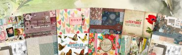 The Scrapbooker's Mammoth Toolbox from Design Cuts