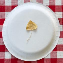 Leaf on a plate