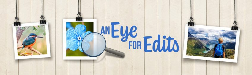 Is Your Eye Trained for Edits? Check out our newest class!