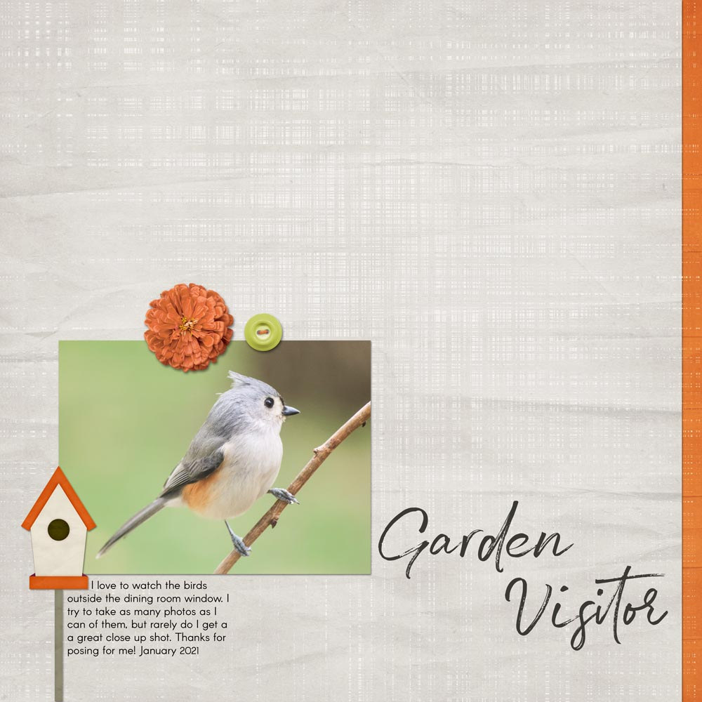 Page and Photo by Carla Shute Tutorial: Wave Filter Grunge Overlay by Jenifer Juris Kits: Design Beautiful Pages 07 Template by Digital Scrapper. Garden Time Kit by Aimee Harrison. Eye For Edits Class by Jenifer Juris Fonts: Arcon; Gustavson