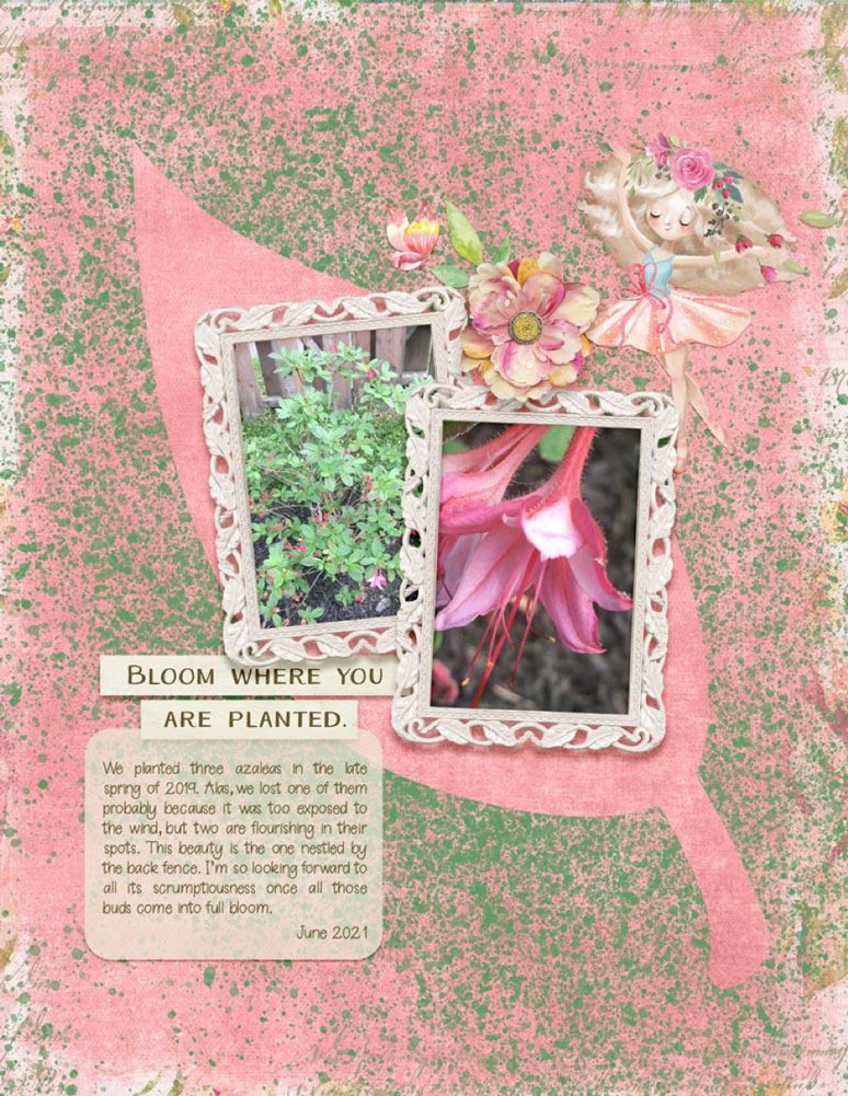 Page: Rose ColePhotos: Bryce EaglesTutorial: Splatter Stencil by Carla ShuteSupplies In Bloom, Spring Flowers May 2020 MiniKit, and It's Spring Somewhere by Alexis Design StudioFont: Berrylicious