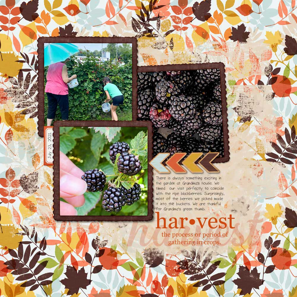 Page & Photos: Julie Singco Tutorial: Dictionary Word Art by Carla Shute Kit: Hello Autumn Sept 2017 Storyteller by Just Jaimee Fonts: Georgia, Hipsterious, Sorbet LTD